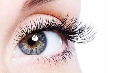 1-Hour 100-Piece Korean Eyelash Extensions for 1 Person